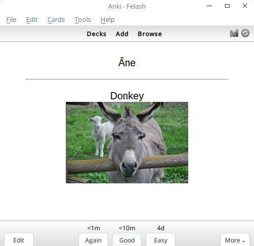 Screenshot for فلش کارت اسامی حیوانات در زبان فرانسه